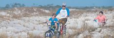 The Pensacola Bay Area is teeming with wildlife and nature trails on our picturesque beaches. Both self-guided and Ranger led tours are available in the National and State Parks located in Pensacola and Perdido Key.