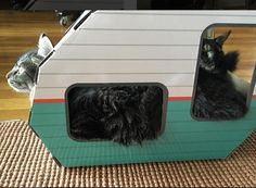 Two cats, one kitty camper!  They can certainly squeeze in for cosy snug nap! Cats just love the kitty trailer for sleeping, hiding, scratching and playtime! Available on Amazon.com, Amazon.uk and our website!