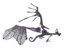 Butterfly dragon ink splatter illustration