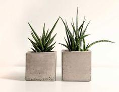 Mit unserer DIY-Anleitung für Pflanzenkübel aus Beton macht…