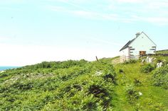 Clare Island Cottage, Co. Clare Island, Architects, Coastal, Cottage, Cabin, House Styles, Green, Nature, Travel