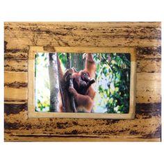 Banana Bark Picture frame to benefit Sumatran orangutans. Sumatran Orangutan, Orangutans, Picture Frames, Benefit, Banana, Pictures, Animals, Home Decor, Animales