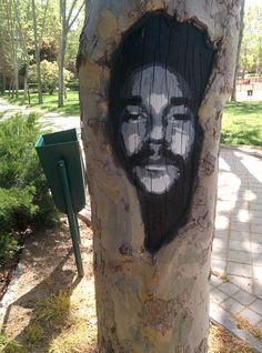 Hombre en un árbol. Villaverde (Madrid).