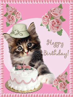GIPHY is how you search, share, discover, and create GIFs. Happy Birthday Pictures, Happy Birthday Wishes, Birthday Cards, Stickers Online, Everything Pink, Happy Mothers Day, Cat Lady, Teddy Bear, Funny