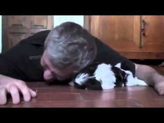 Ein Mann und sein Welpe kommen sich gefährlich nahe Wie der Kleine alles gibt, lässt dein Herz hüpf - YouTube