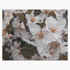 White Springs, Spring Blossom, Print Packaging, Family Activities, Jigsaw Puzzles, Just For You, Vibrant, Prints, Photography