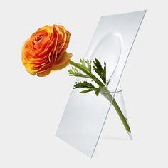 Vanishing Vase | MoMAstore.org