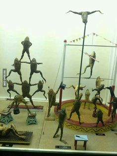 Frog taxidermy! Oh, how I wish!!!