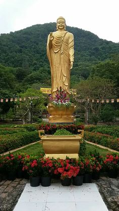 Chinese Buddhist Art and Statues with beautiful lines and vibrant colours. Giving the feeling of calm and serenity. Bodhisattvas and Warrior Monks. photos by Sifu Derek Frearson Gautama Buddha, Buddha Buddhism, Buddha Art, Buddhism Wallpaper, Buddha Statue Home, Buddha Temple, Bodhi Tree, Beautiful Lines, Mother And Father