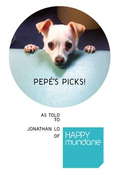 Pepés Picks: 5 Items Every Dog Will Love by  @Jonathan Nafarrete Lo / happymundane
