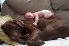 baby and dog... LOVE this!!