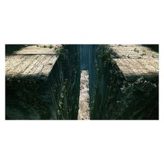 Teaser Concept Art Of The Glade In THE MAZE RUNNER ❤ liked on Polyvore featuring maze runner