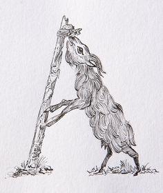 Animalpha by Filipa Martins, via Behance