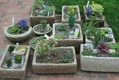 Online tuinieren informatie tuinaanleg en tuinplanten - Bloembakken zelf maken