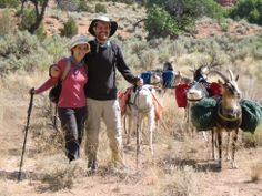 #goatvet likes goat packing or bush-walking with the goats carrying the gear