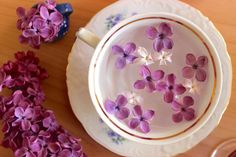 Ceai de LILIAC – reţete cu muguri, frunze, flori şi scoarţă - Top Remedii Naturiste Liliac, Plates, Tableware, Cake, Desserts, Diet, Plate, Dinnerware, Pie