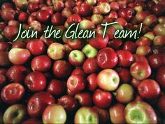 If you would like to volunteer to attend a gleaning, click on the RSVP button below . Once the gleaning reaches the number of people needed, an update to the page will be made. Please check back...