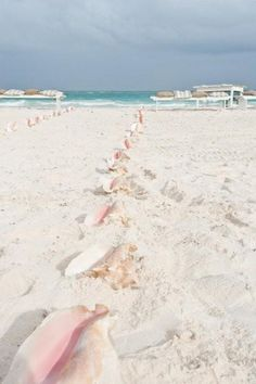 Pale pink conch shells make the perfect laid-back beach wedding aisle markers - so pretty against white sand!