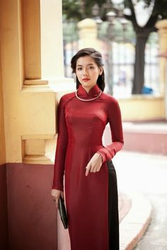traditional vietnamese ao dai <-- I was able to wear one to a New Years celebration today. It was very pretty.