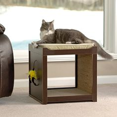Modern Interactive Cat Cube -- Be sure to check out this awesome product. Note: It's an affiliate link to Amazon.