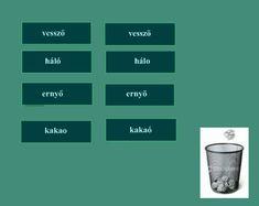 Anyanyelv-pedagógia