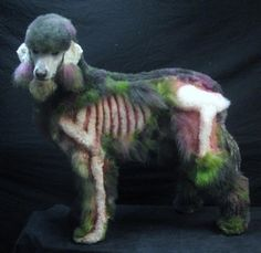 Zombie Poodle...wonder if Bailey would let me do her hair this way?  :)