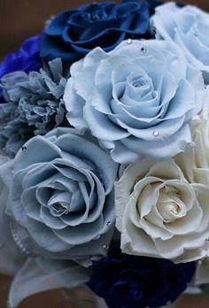 Azules love it