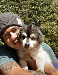The cutest fucking picture i have ever seen 😻🥺 Cutest Dog On Earth, Harry Styles, Calum 5sos, 5sos Preferences, Zayn Malik Pics, Jackson Movie, Calum Thomas Hood, 5secondsofsummer, 1d And 5sos