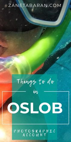 Things To Do in Oslob, Cebu, Philippines - Photographic Account – Zaneta Baran Philippines People, Philippines Cities, Visit Philippines, Philippines Culture, Backpacking Ireland, Stuff To Do, Things To Do, Philippine Holidays