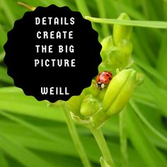 It's all about the details...  #Inspiration Big Picture, Tech, Movie Posters, Movies, Inspiration, Women, Biblical Inspiration, Films, Film Poster