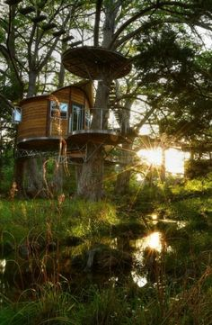 Discover this dreamy tree house near Austin, Texas, for the ultimate relaxing vacation!