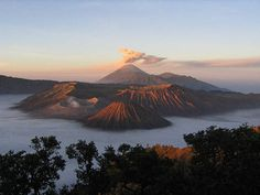 Mount Bromo- best scenery I've ever seen or will see. Indonesia