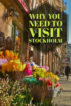 Why You Should Visit Stockholm