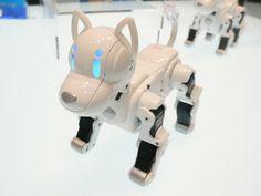 Cool robot dog I-SODOG