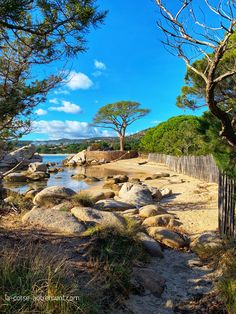 Corse Most Beautiful Beaches, Beautiful Places, Sea Photo, France Travel, Travel Around The World, Travel Destinations, Places To Visit, Scenery, Summer