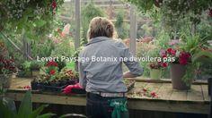 Levert Paysage Botanix ne dévoilera pas le secret d'une bouture parfaite