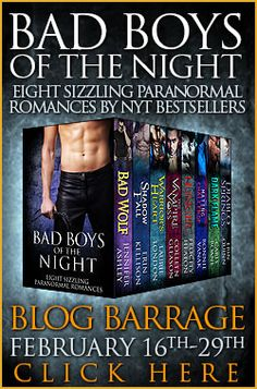 Book Barrage and Giveaway for the Bad Boys of the Night Anthology
