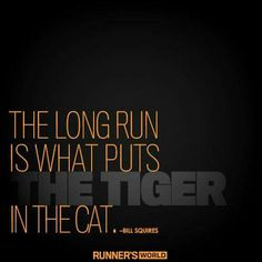 The long run is what puts the tiger in the cat.