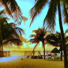 Hotel Privilege Aluxes, Isla Mujeres