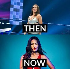 Dean Ambrose Hot, Bella Sisters, Nikki And Brie Bella, Wwe Womens, Professional Wrestling, Superstar, Twins, Queen, Gemini