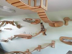 Every piece of cat furniture you see in the following 14 photos was crafted by German designer and carpenter Stefan Hofmann. When Hofmann moved into a new apartment, he unknowingly inherited Mowgli, a stray previously owned by the previous residents. …