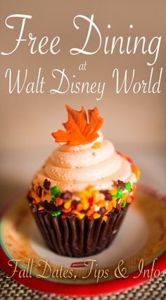 Free Disney Dining Plan is now available at Walt Disney World for select dates August through December 2016, and can be booked through July 8. This post co