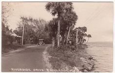 This old postcard shows the river road in Rockledge, Florida south of Cocoa.  The road looks much the same in 2012.