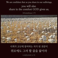 #성경 #성경말씀 #말씀 #묵상 #기도 #주님 #하나님 #큐티 #크리스찬 #bible #bibleverse #pray #prayer #qt #god #godisgood #godisgreat #godislove #jesus #jesuschrist #christian #word of God #Word of day #scripture #daily bible #quote #quotes #bible verses #daily bread #bible quotes #동대문디자인플라자 #동대문 #ddp #dongdaemun design plaza #seoul