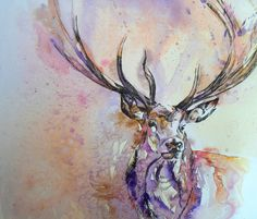 Pen and wash on paper. I started this stag at Hurst Horse Show and finished it off yesterday