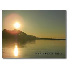 Sunset in Wakulla County Florida Postcards