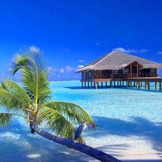 www.dollboxx.com.au #maldives