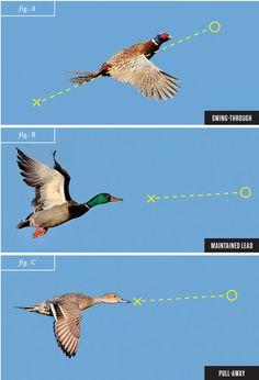 shotgun techniques, wingshooting, duck hunting, shooting ducks, leads, skeet shooting