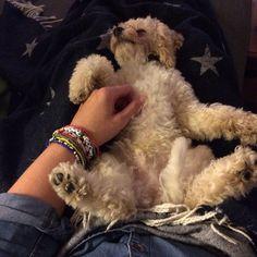 Billy | Frankie says relax