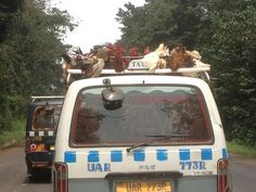 Frying chicken on the roof of a minibus in Uganda